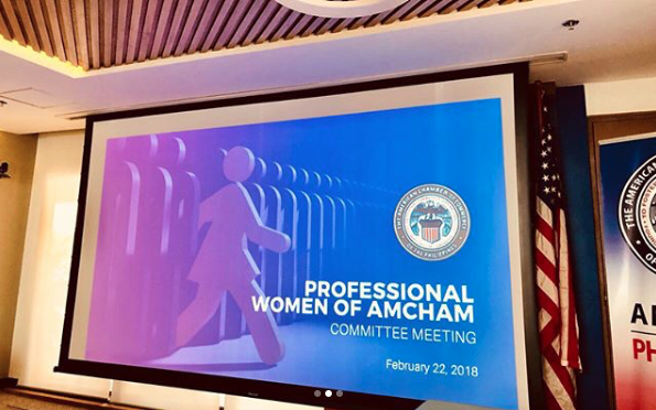 The Professional Women of AmCham - beautypreneur